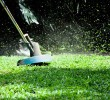 Measures you can take to keep your lawn neat